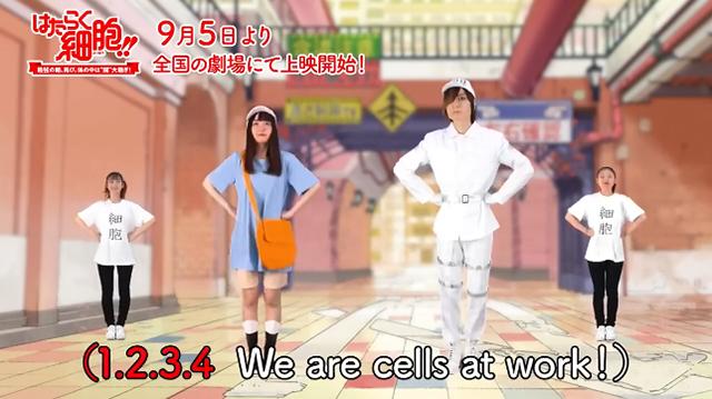 """「工作细胞」""""健康体操""""宣传视频"""