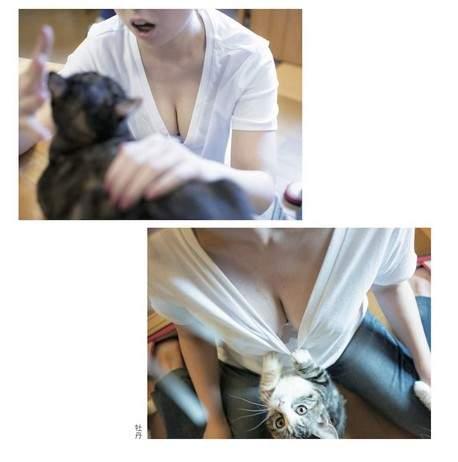 青山裕企《猫咪与欧派写真书》好想当那只猫~好想好想