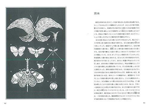 「宝石之国」第11卷特典图解手册即将发售