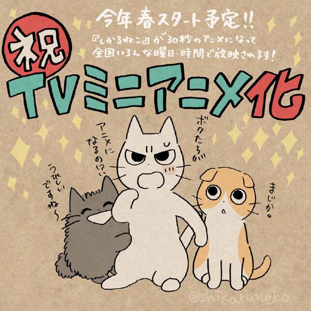 「不爽喵」宣布将制作TV迷你动画